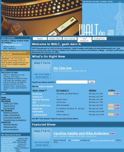 Screenshot of the Walt website