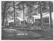 Three houses on Jackson Court in 1954 with tall pines