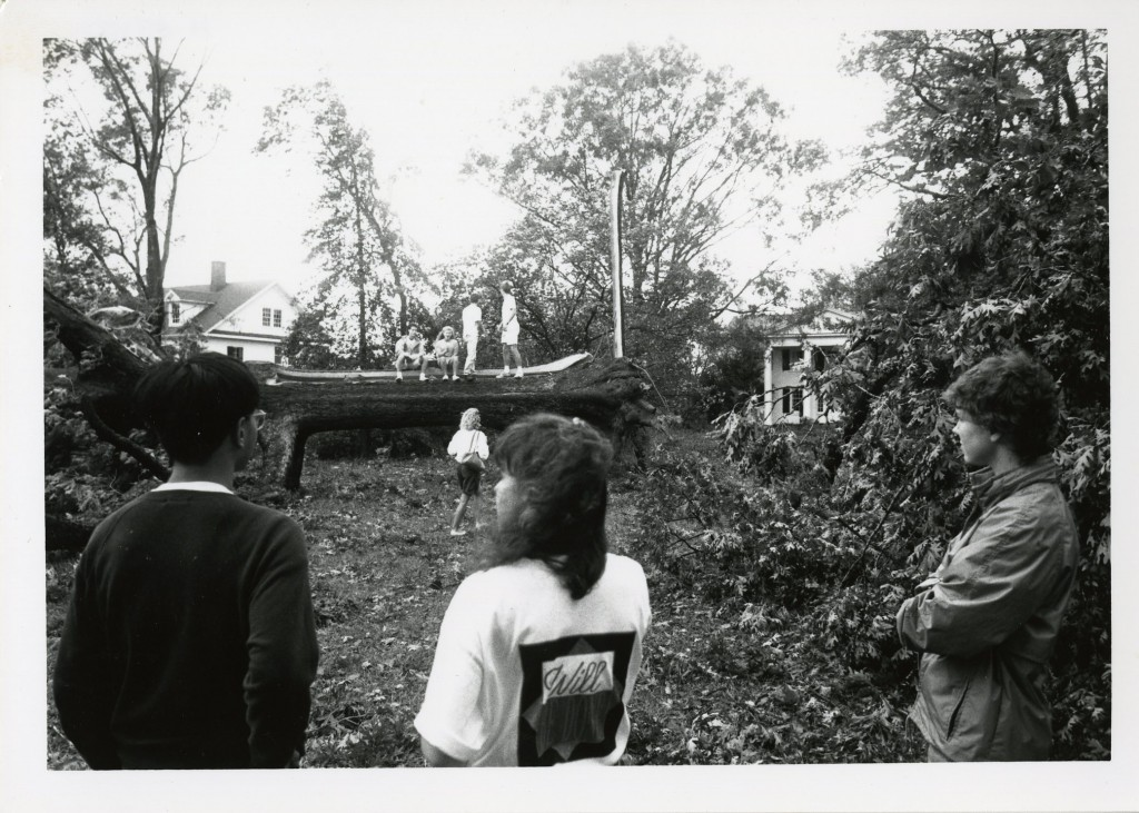 Students walk/sit on the trunk of a felled tree on campus.