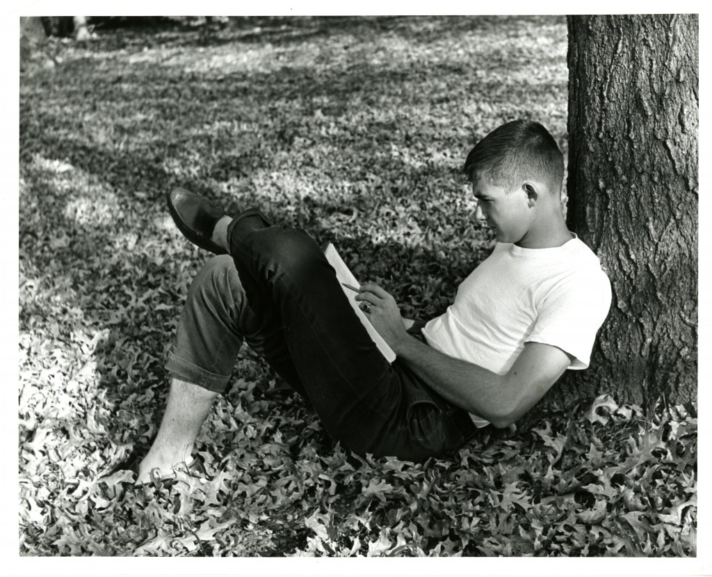 A student studies under a tree, amid a pile of fall leaves - a common sight on campus!