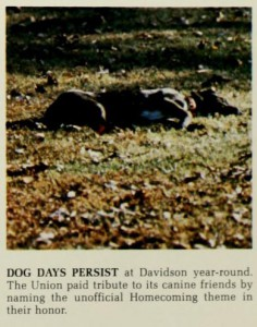 Dog days in 1983