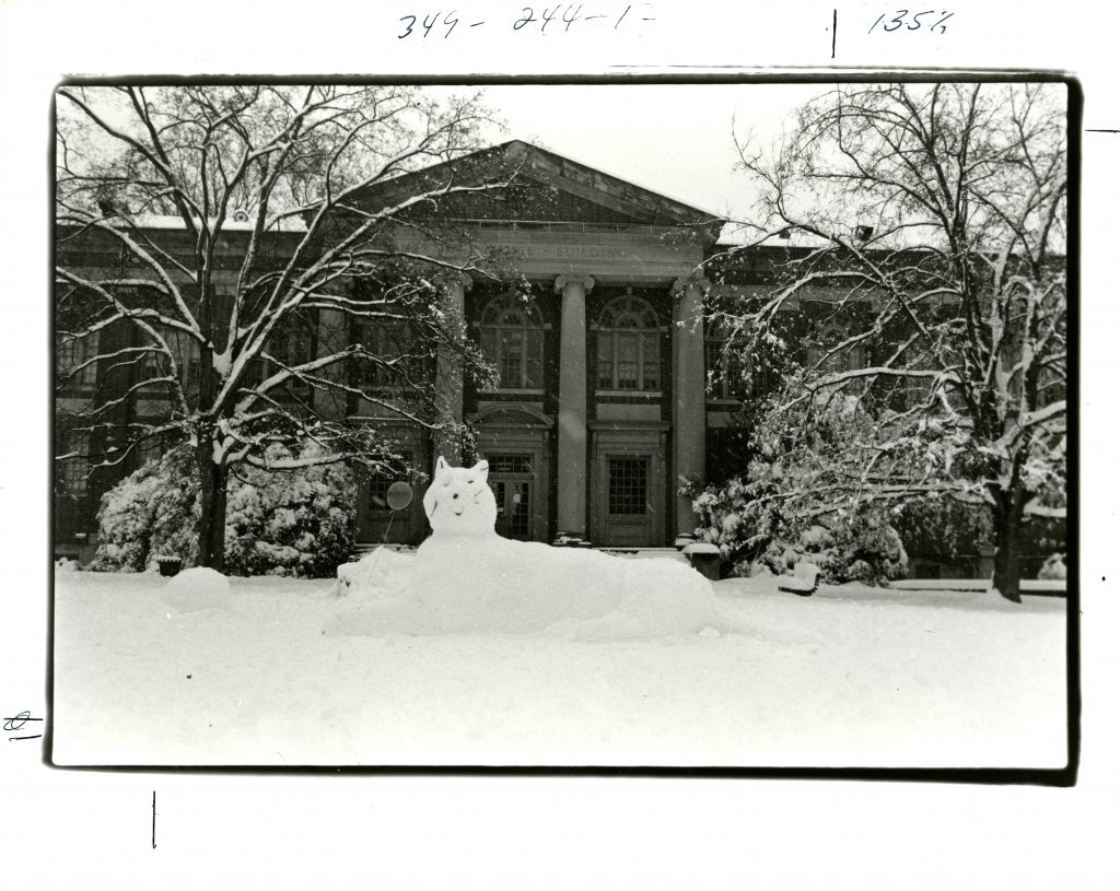 A Davidson Wildcat made out of snow! Martin Science Building, circa 1980s.