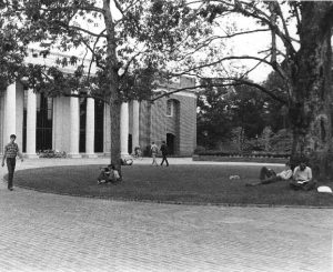 The front of E.H. Little library seen through two trees and a grass circle plaza with students studying below the trees