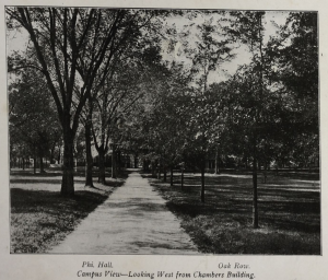 1903 Souvenir Album, Campus View Looking West from Chambers