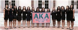 color photogrpah of 15 women of the AKA sorority in 2008
