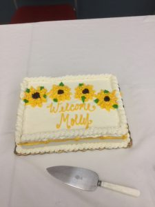 "White sheet cake that reads ""Welcome Molly"""
